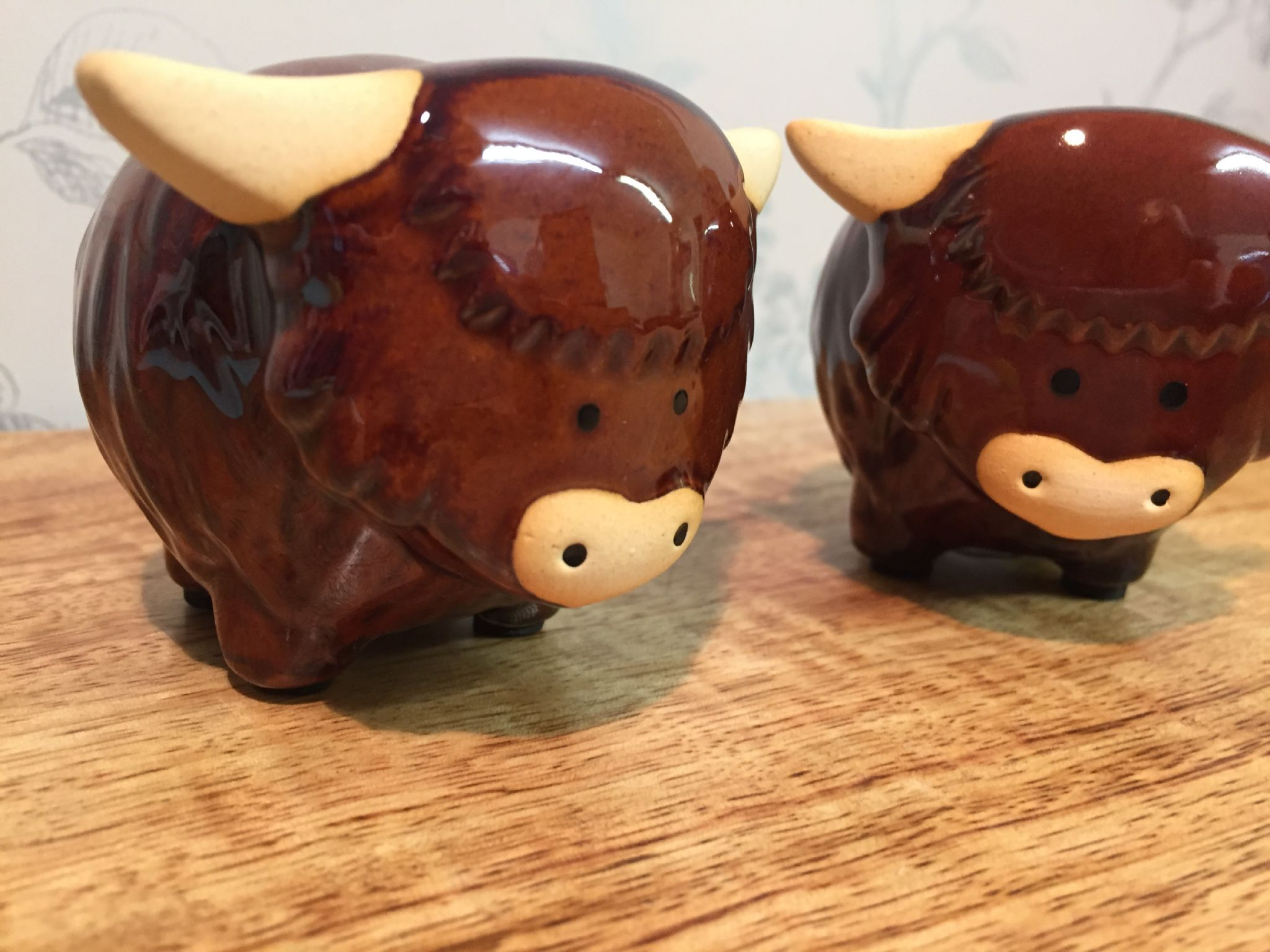 Highland Cow Ceramic Salt Amp Pepper Pot Gift Set